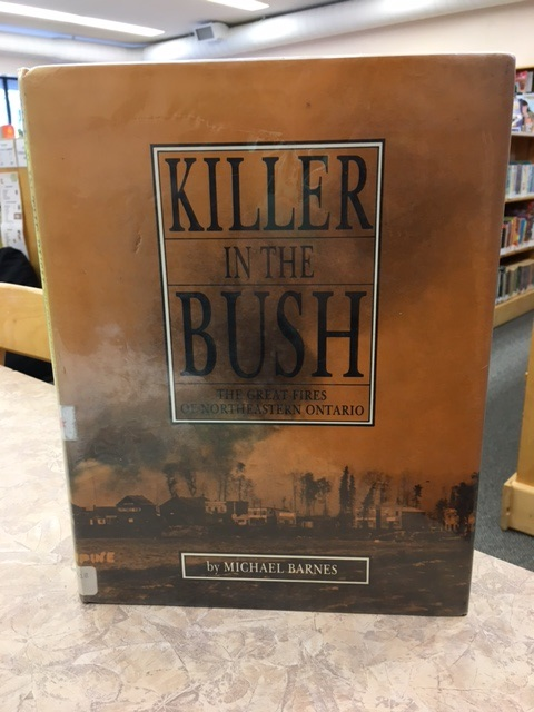 Killer in the Bush Book Cover